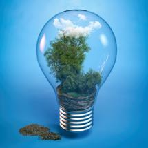 Emplois et enjeux du developpement durable